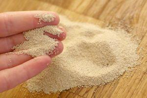fermento biológico seco