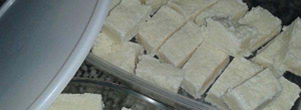 cocada de leite ninho facil