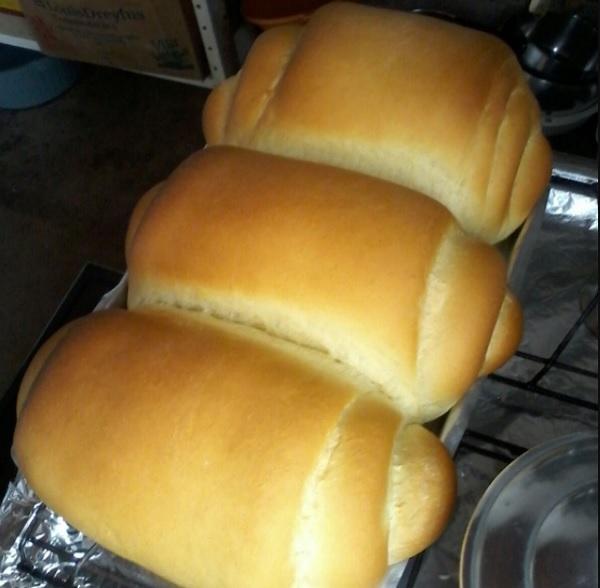 Pão Caseiro: 20 Receitas Fáceis e Rápidas